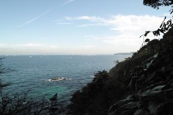 猿島09.12.12J.Yama154.JPG