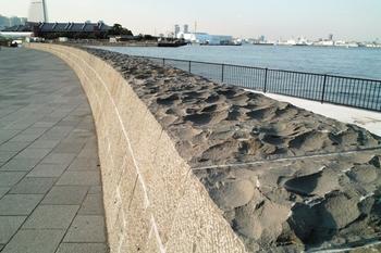 象の鼻公園2009.09J.Yama85.JPG